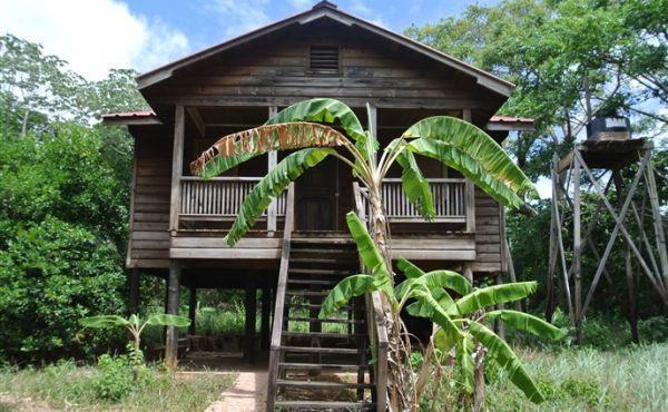 Lush Garden Home