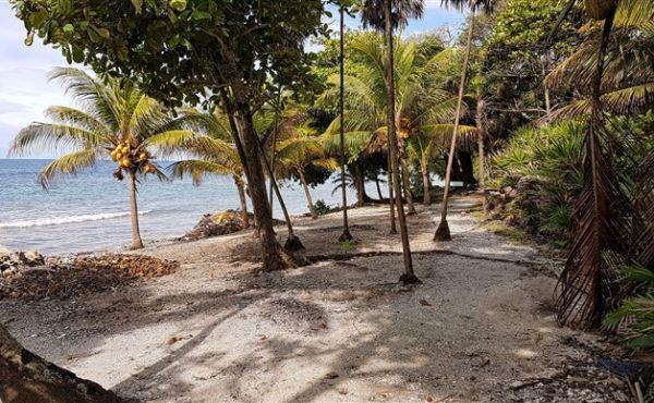 Beach Front at Little Bight