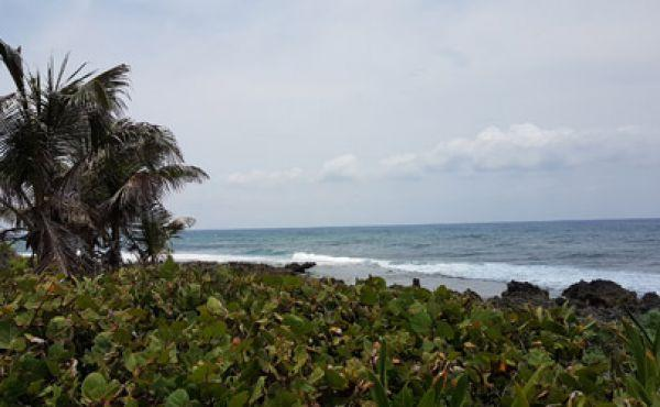 Oceanfront Acreage