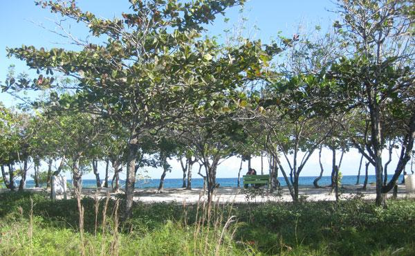 0.93 Acre Oceanview Lot at Blue Bayou