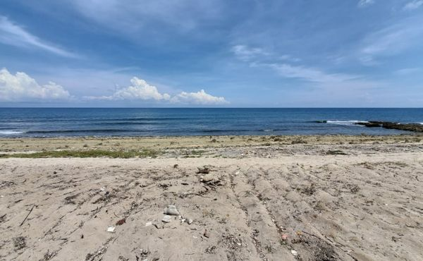 Six Beachfront Lots at Swanish Bay