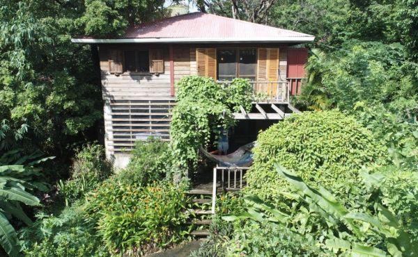 The Eco House